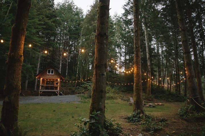 Rustic West Coast Cabin