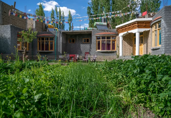 Comfortable and Authentic Ladakhi Family-run B&B