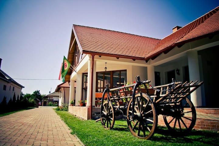 Falusi Vendégház a Tisza Partján