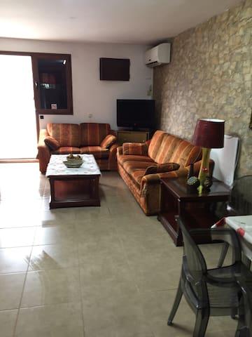 Casa elisa canarias - Fataga - Apartment