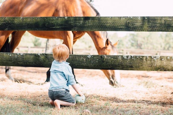 Large 1BR/2BA Horse Farm B&B Apt
