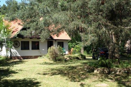 Dom Letni nad Bugiem - Deskurów - Hut