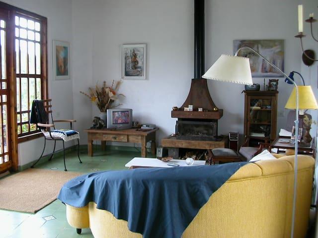 Sala de estar com lareira, saída para amplo terraço suspenso