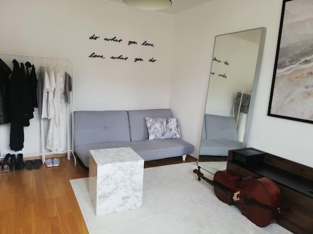 Whole Apartment central area Hirschgarten