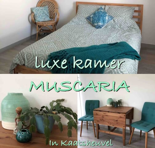 Luxe kamer Muscaria bruisend dorpshart Kaatsheuvel