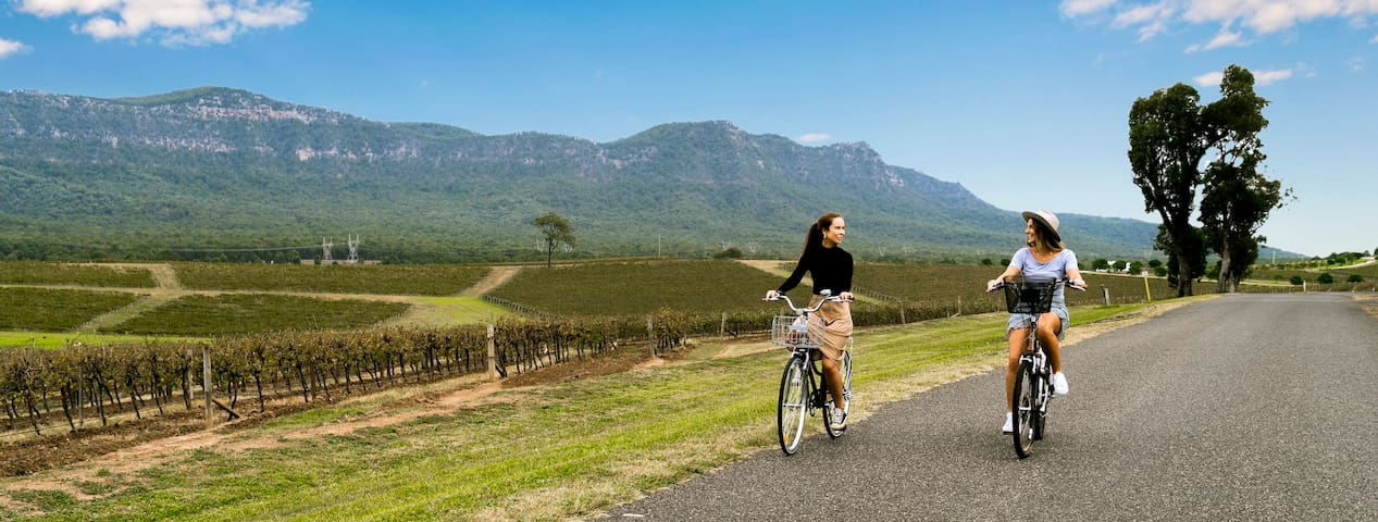 Electric bikes available for wine tours
