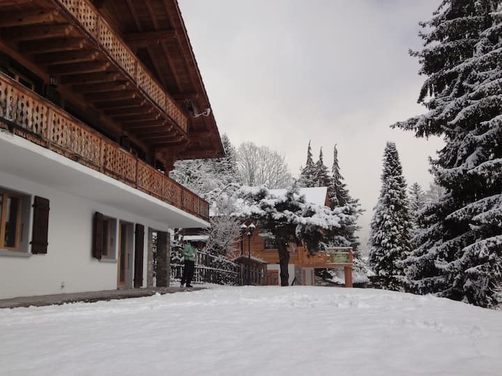 A Swiss Alpin Apartment Ideal for Ski & Hike