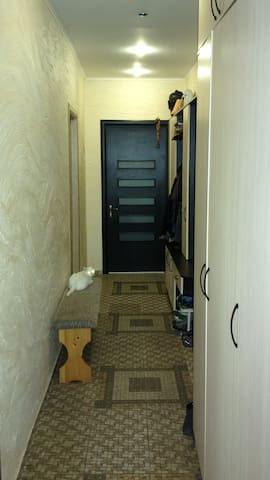 corridor, entrance to a flat