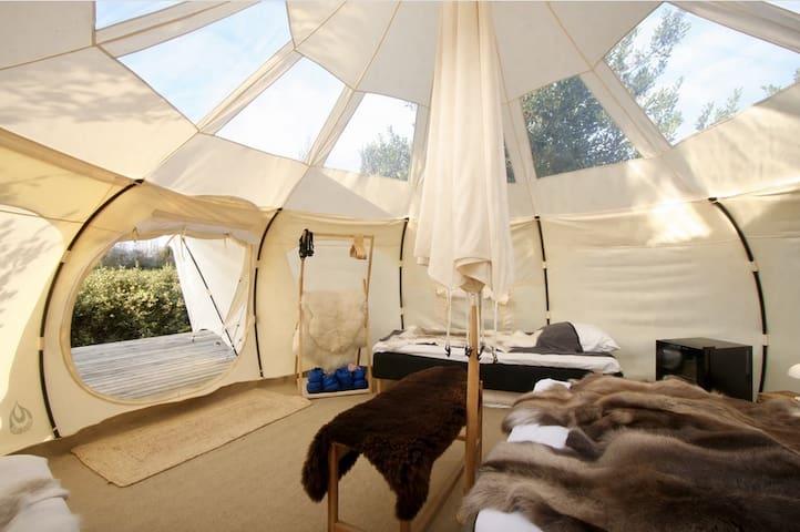Luxury Suites in the Garden