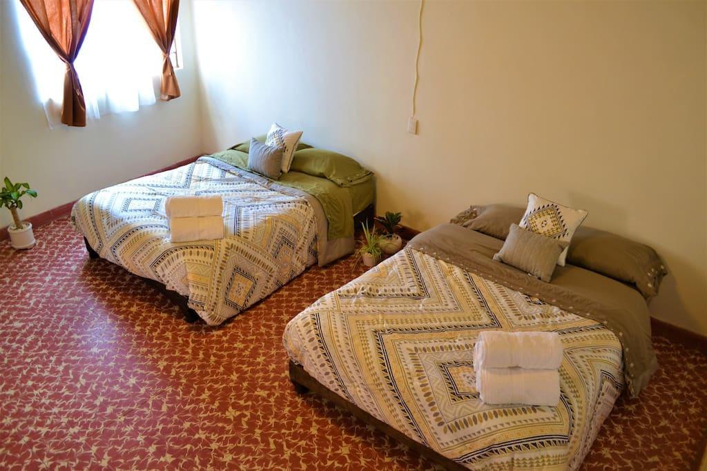 las camas y plantitas