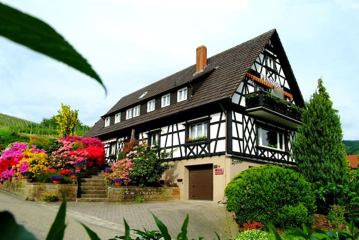 Pension am Weinberg in Sasbachwalden - Sasbachwalden - Bed & Breakfast
