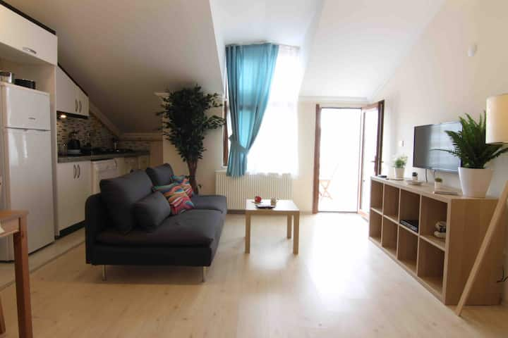 Luminous Recently Furnished 1+1 w/ Terrace - Brown