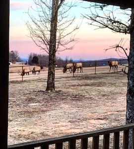 Home Sweet Buffalo - 5 minutes from Boxley Valley
