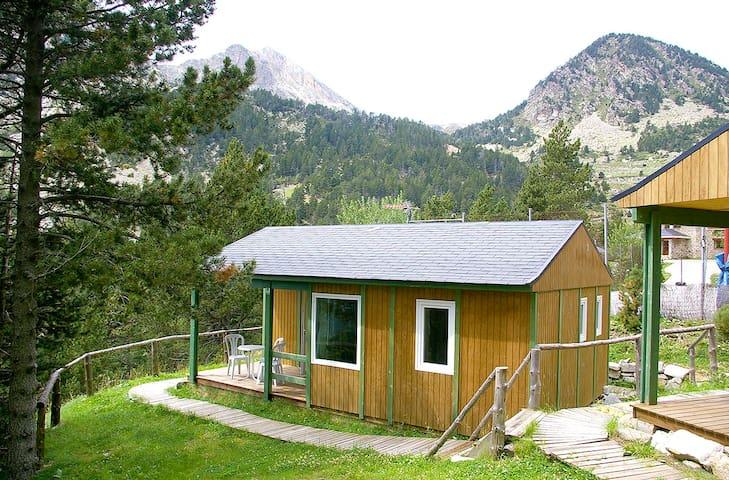 Bungalow aïllat a l'Alta Muntanya, Vallter