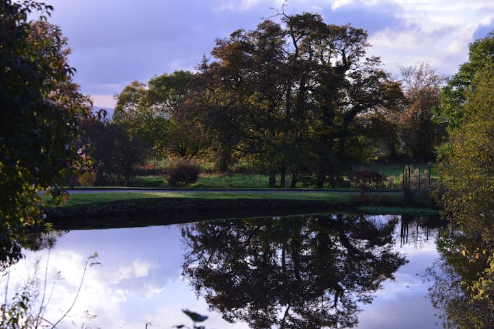 Peaceful, idyllic and unique. - Cookhill - House