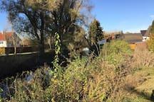 Idyllic view at the Dorfen / Idyllische Landpartie am Fluss Dorfen
