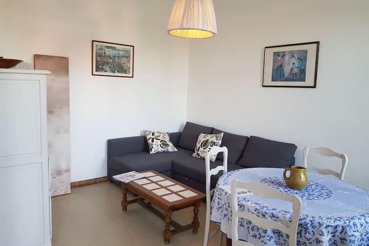 Nice living room (1st floor)