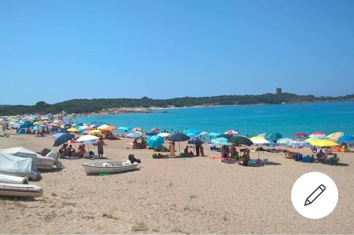 Vacanze al Mare a Baia Vignola (AGLIENTU ) SS