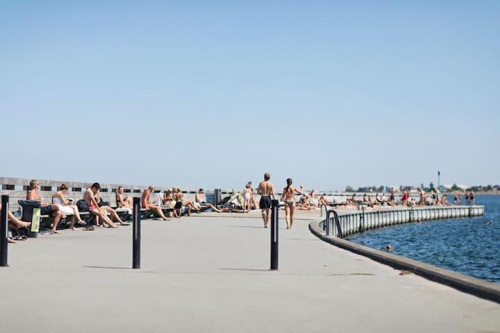 Tæt på Svanemøllen Strand