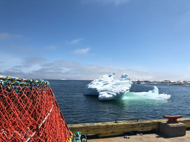 On the wharf in greenspond