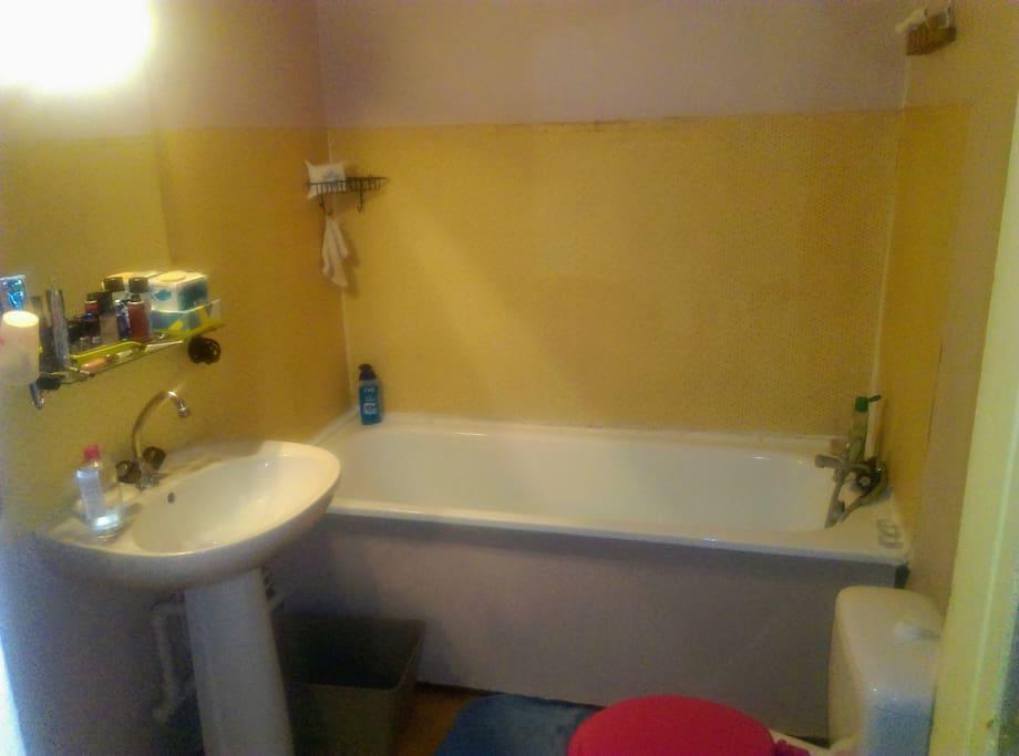 Salle de bain (vasque, baignoire, toilettes)