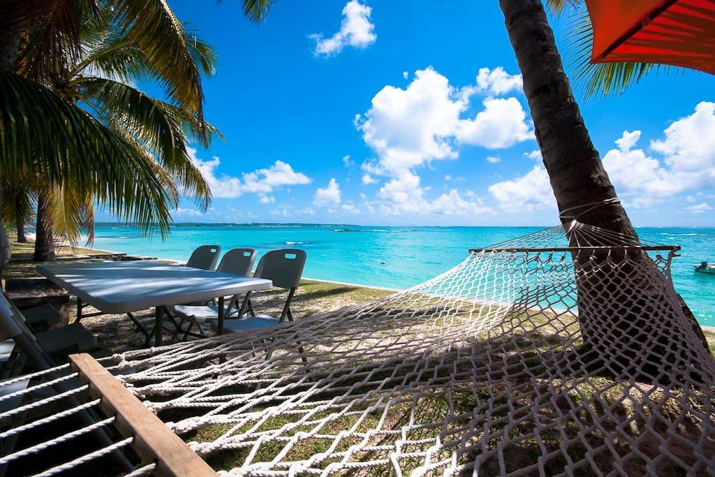 Paradise isn't it?