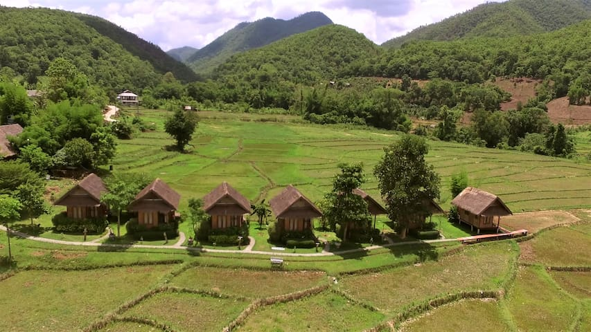 ★Rice paddy & Roosters Cottage w/breakfast