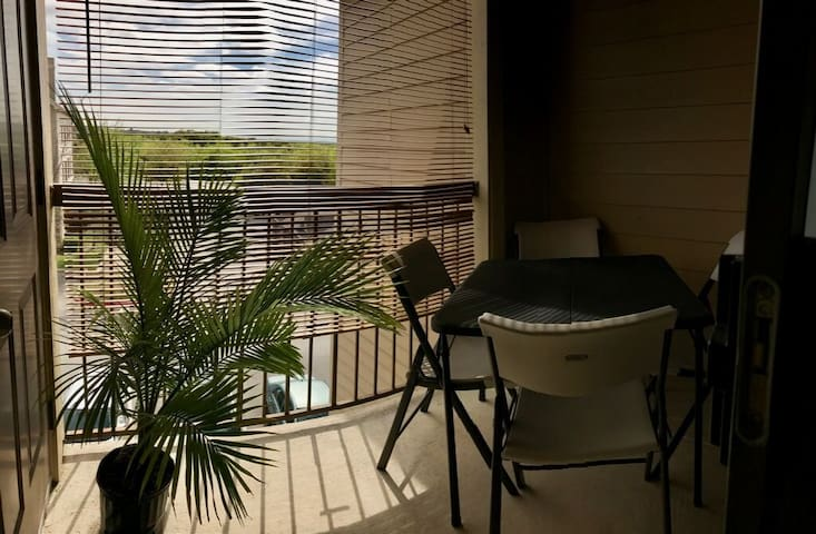 Quiet Top-Floor Apartment 3 miles from La Cantera - San Antonio - Apartment