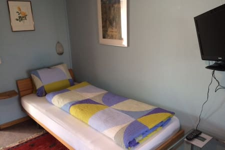 Cozy room for one person - Bad Ragaz - 住宿加早餐