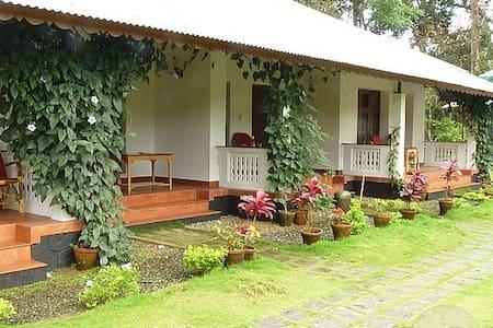 Dew Drops Farm Resorts - Munnar - Villa