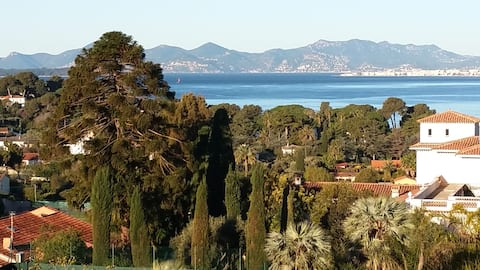 Cap d 'Antibes 50m2 Appartment