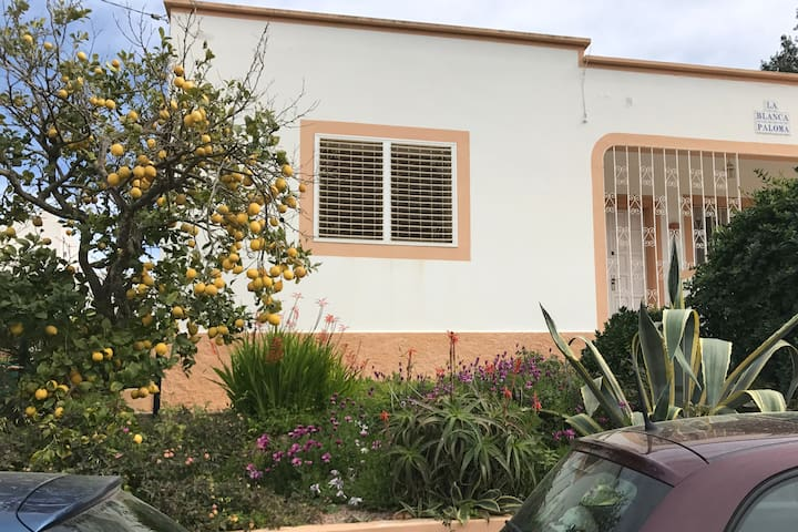 Country house with roof top pool - Illes Balears - Ház