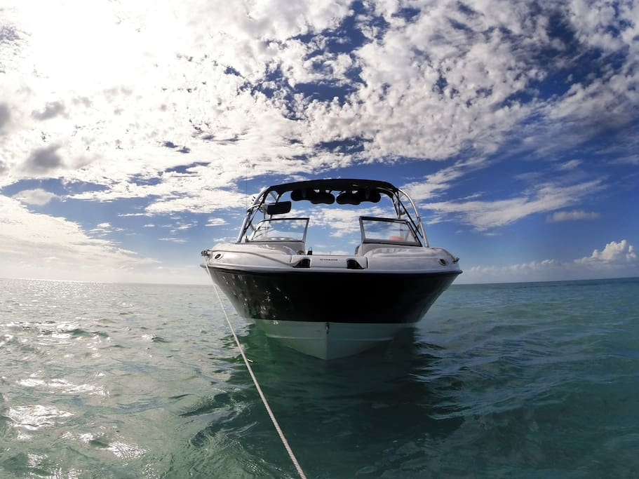Cozumel Tours and Private Excursions www.rentaboatcozumel.com
