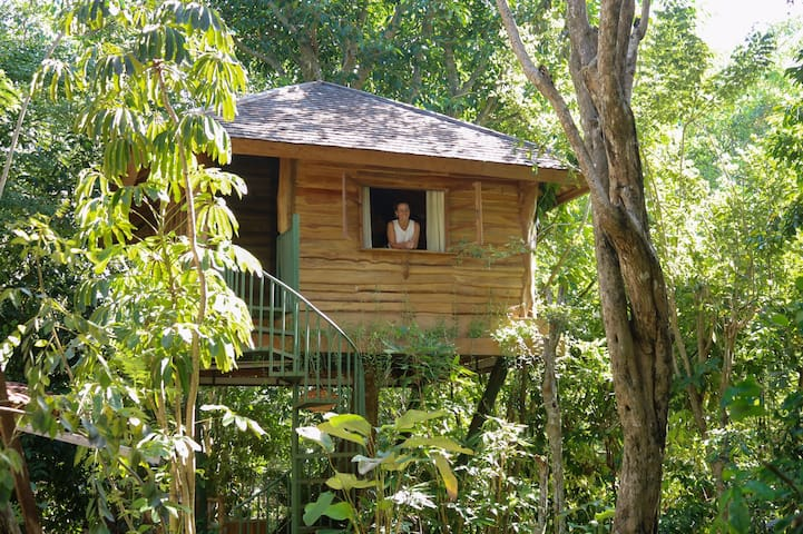 Magical Tree House in Ungasan #Astragal