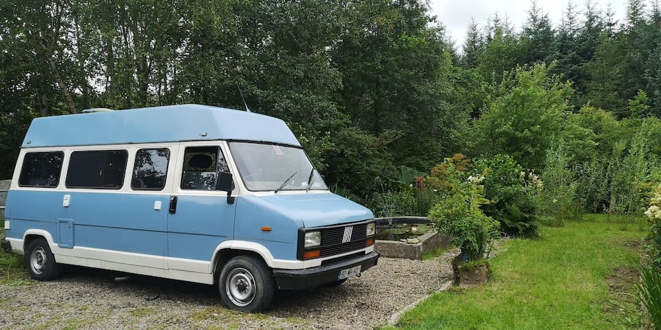 Blue camper of happiness 💙