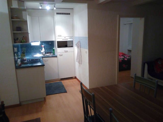 2 1/2 1/2 bedroom flat for holidays to rent.:) - Churwalden - อพาร์ทเมนท์