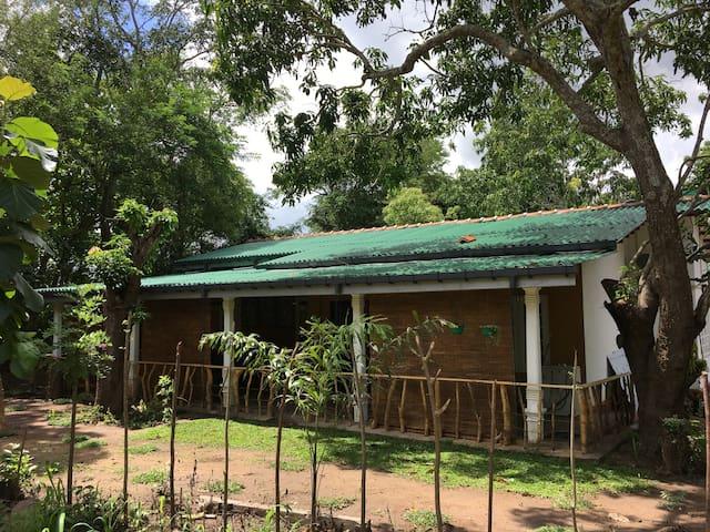 Tembo Cottage Wilpattu
