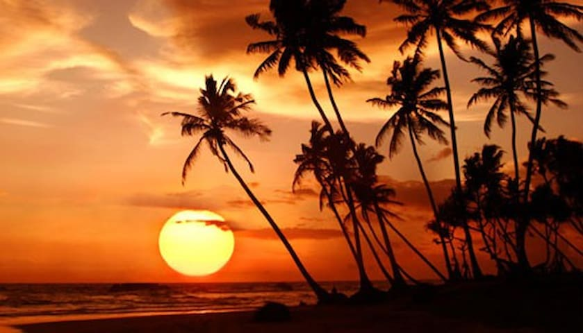 Aloha Getaway - Free Parking,  WiFi & 30 Days!