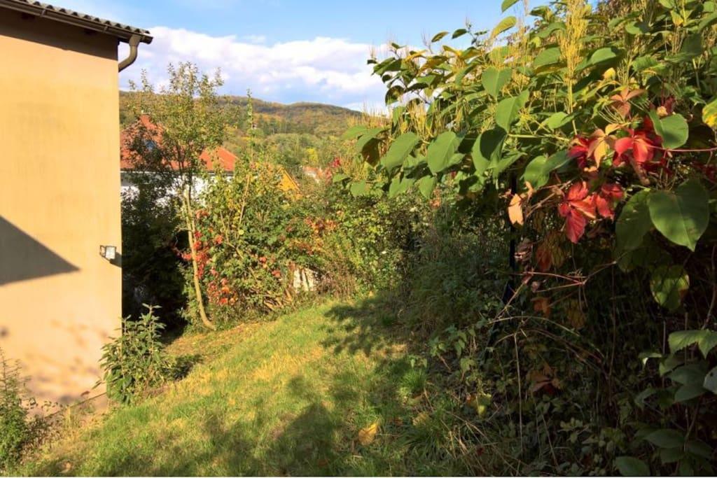 Rückansicht der Hauses mit Sicht auf den Wienerwald