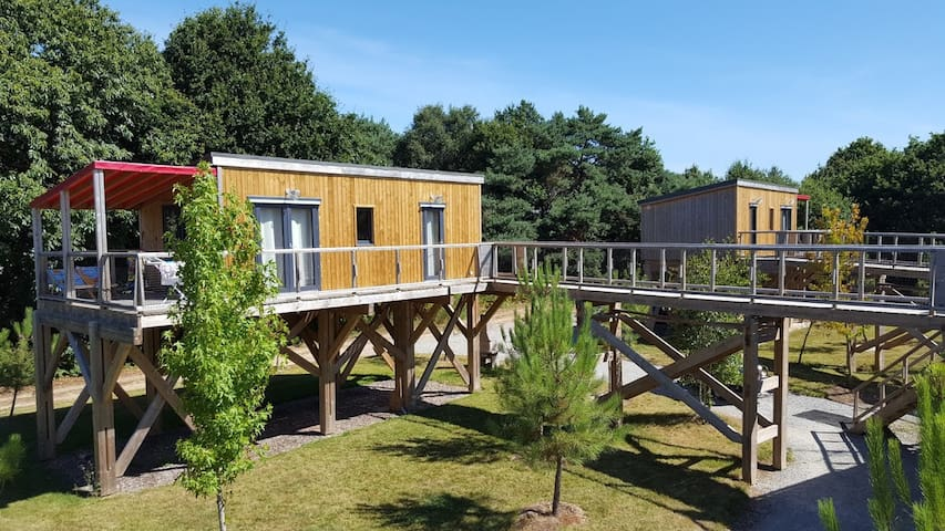 Cottage en Brocéliande - Jacuzzi, Sauna, Piscine - Caro