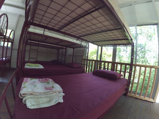 Min House Camp, 8 bed mixed dorm