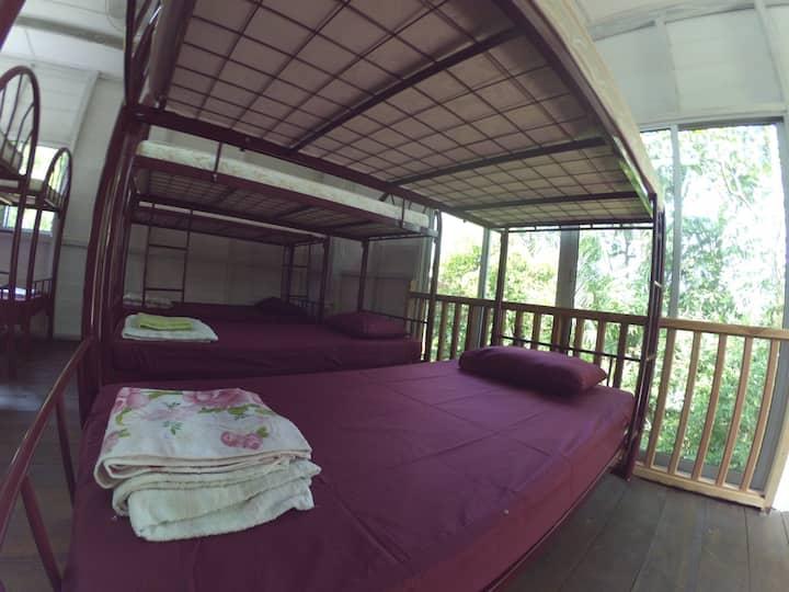 Min House Camp, 8 bed mixed dorm