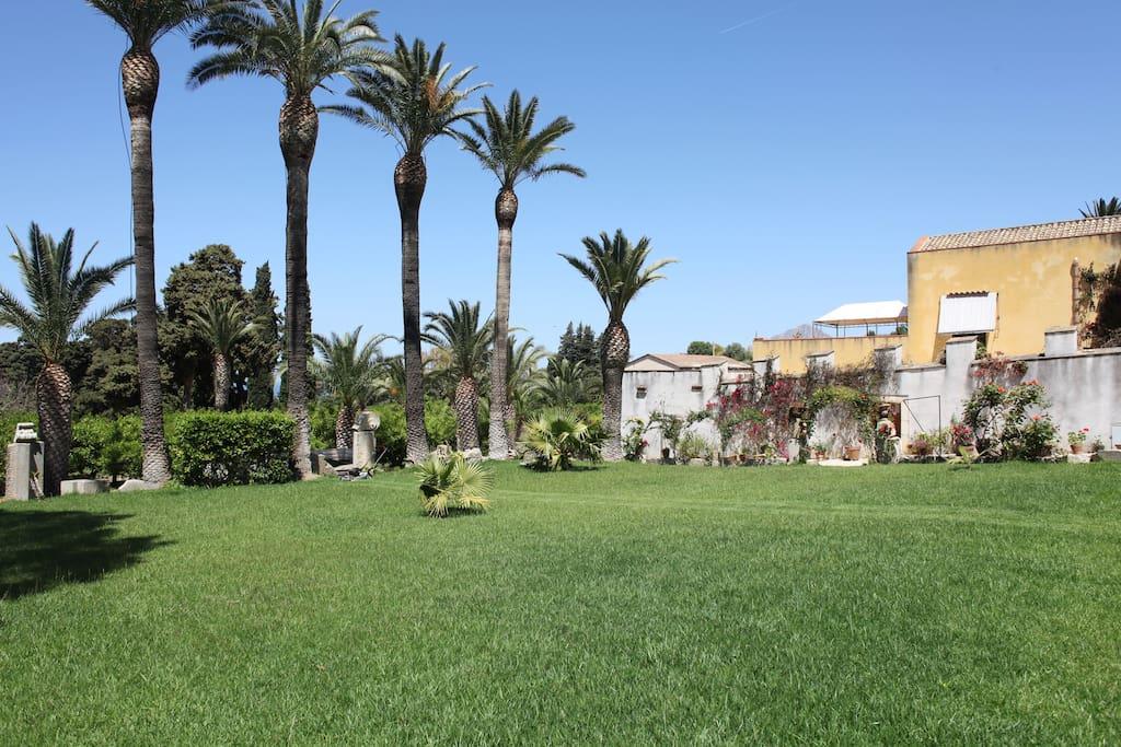 Vista panoramica giardino