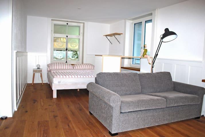 Helle Wohnung mit grossem Balkon in Winterthur