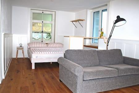 Winterthur - Helle Wohnung mit grossem Balkon