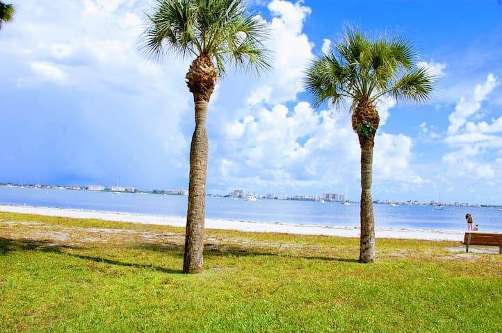 Beachfront Studio Condo Gulfport Florida - Gulfport - Apartment