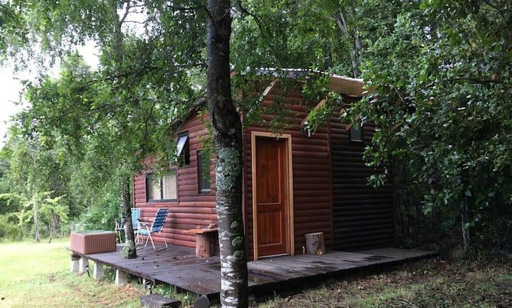 Linda cabaña en la montaña ,terreno espacioso