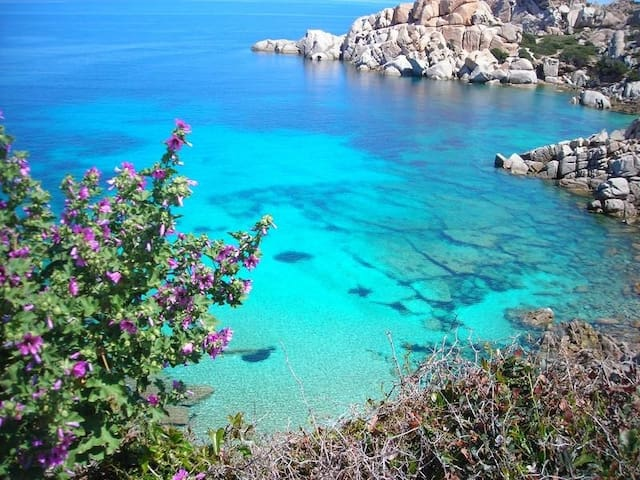 Sardinia :  Lovely apartment sea view - La Ciaccia - Ev