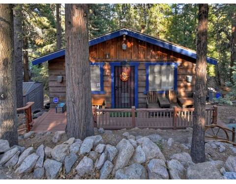 Adorable Cozy Cabin just minutes from Sky Park
