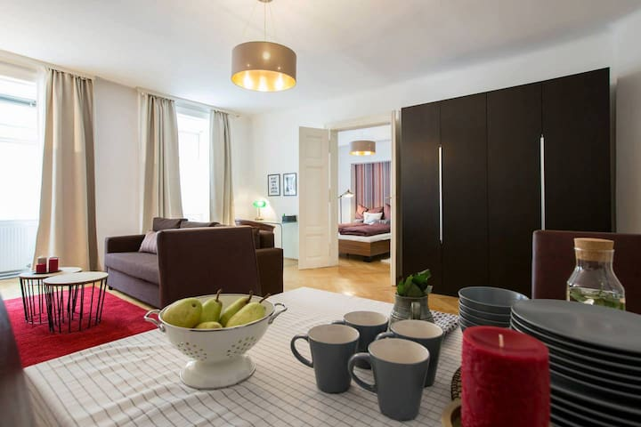 Apartment in the heart of Vienna (Sing 18, Top 6)
